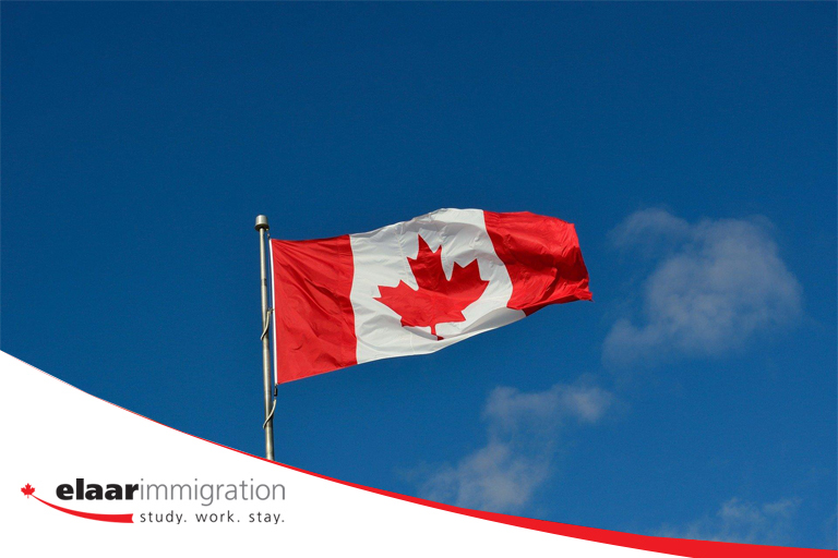 An immigration consultant can help you fill out your application correctly.